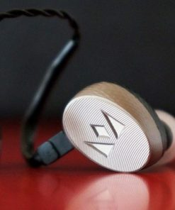 In Ear Monitors (IEM)